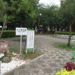 三ツ和公園(みつわこうえん) 南鳩ヶ谷
